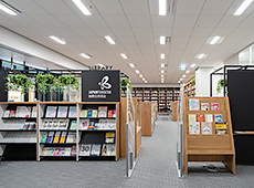 Image result for japan foundation library