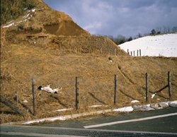 Photo from the series Japanese Landscape, taken by Norio Kobayashi: